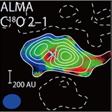 An extremely young protostar, SMM11, in the Serpens Main cluster forming region observed with ALMA in 1.3 mm continuum, 12CO J=2-1 line, and C18O J=2-1 line. These results, as well as submillimeter and infrared results, suggest that the protostar is in an early phase of star formation right after the second collapse.