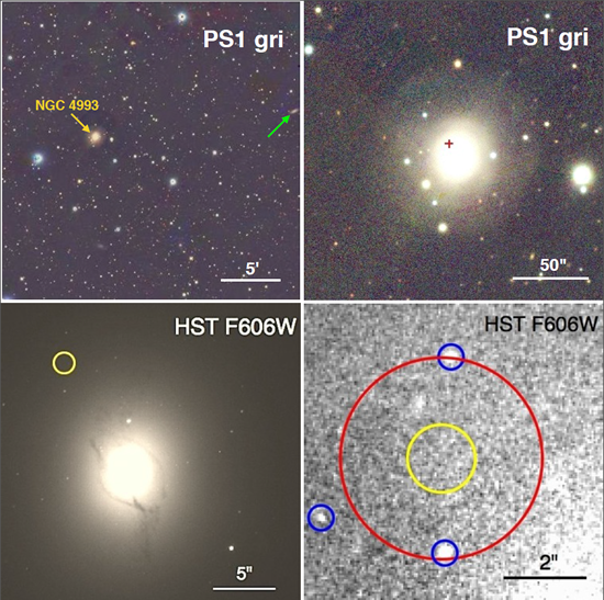 The host galaxy (NGC 4993) of SSS17a, the first electromagnetic counterpart to a gravitational wave source