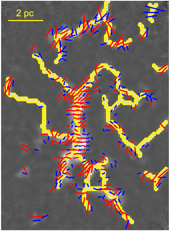 A network of filamentary cloud and the well ordered magnetic fields within
