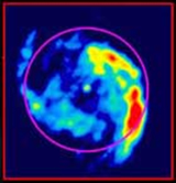 Multi-transition CO images toward the Whirlpool galaxy M51. The images show stronger intensity toward the nucleus in the higher CO transitions, suggesting that the molecular gas around the AGN is dominated by denser and warmer molecular gas. The optical p